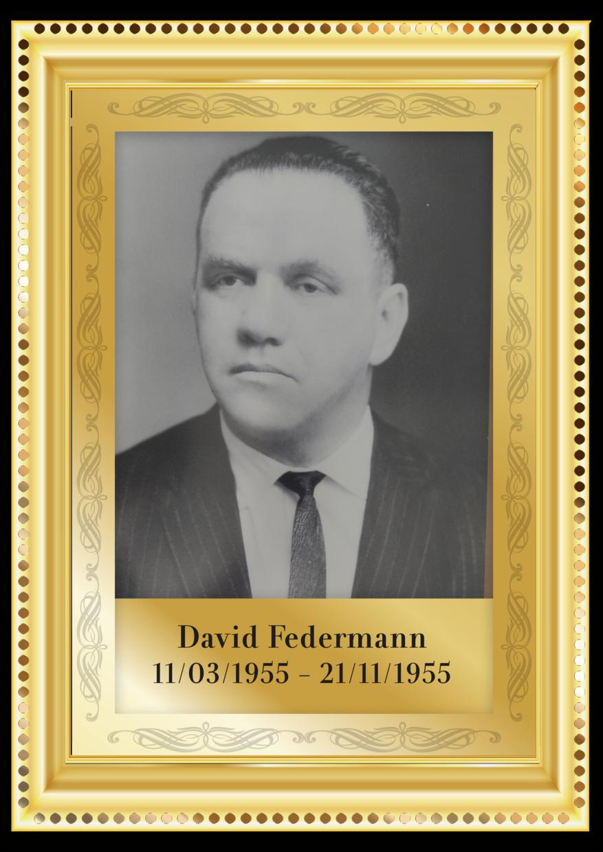 40 david federmann.png